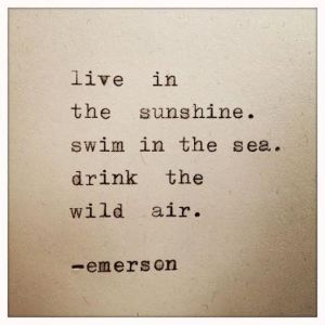 Liveinsunshine_quote